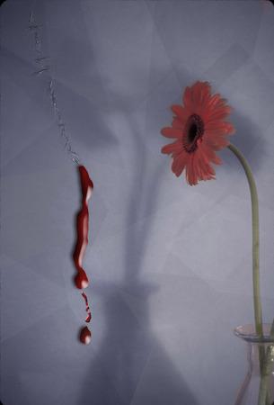 Red flower in glass vase Stock Photo