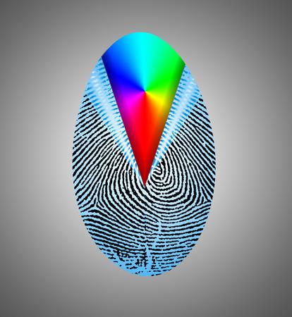 Rainbow Fingerprint Composition