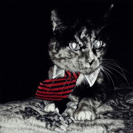 Modern art. Cat in tie.