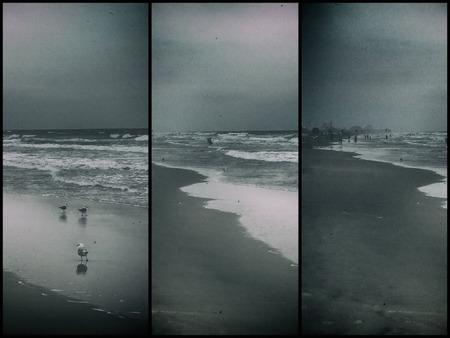 Seagulls on sandy ocean shore. Village in the distance Standard-Bild - 105314527
