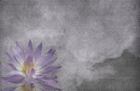 Lotus on grunge cloud background