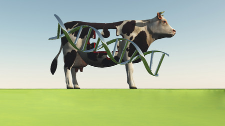 Cow with DNA strand and hole in puzzle shape