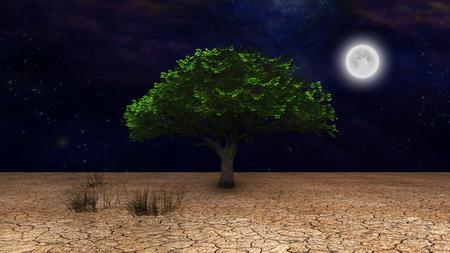 Surrealism. Green tree in arid land. Full moon in night sky.