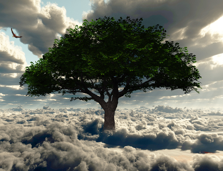 Green tree in a field of clouds. Eagle in the sky.