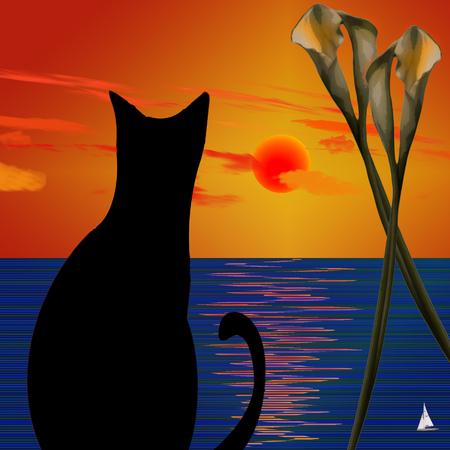 Black cat on ocean sunset