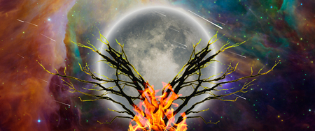 Mystic tree with bonfire in moonlight. Vivid universe Imagens