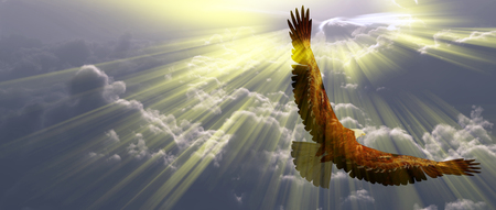 Eagle in flight above the clouds. Sunset or sunrise Stockfoto