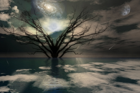 Magical Landscape. Surreal tree. Galaxy and full moon in the sky