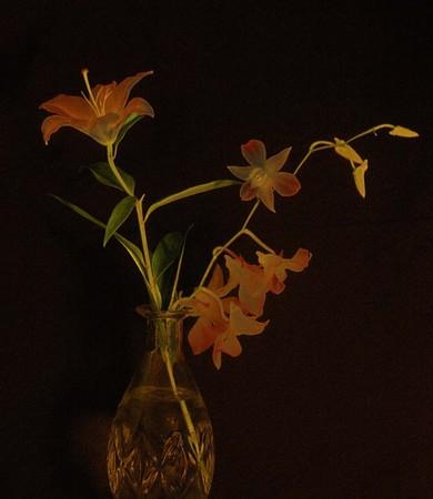 Flowers in vase. Black background Stock Photo