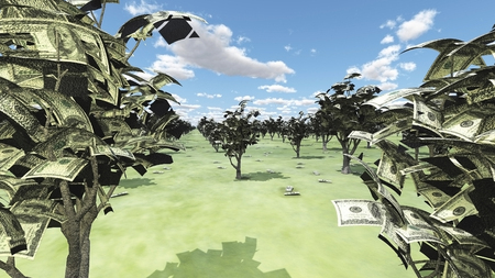 Orchard US Currency Trees. 免版税图像