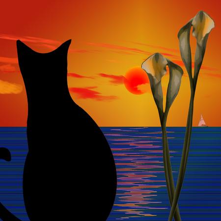 Black Cat. Ocean sunset