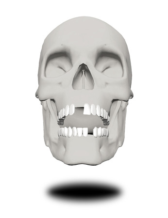 Human skull without a few teeth