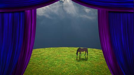 Horse in green meadow