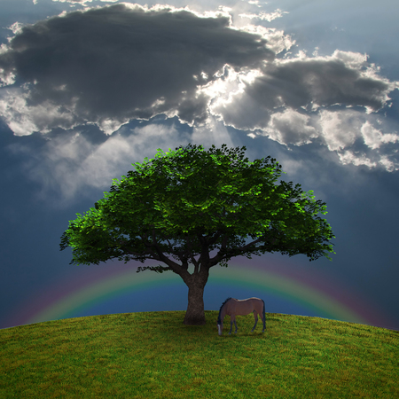 Horse near the tree. Rainbow in the sky. 3D rendering