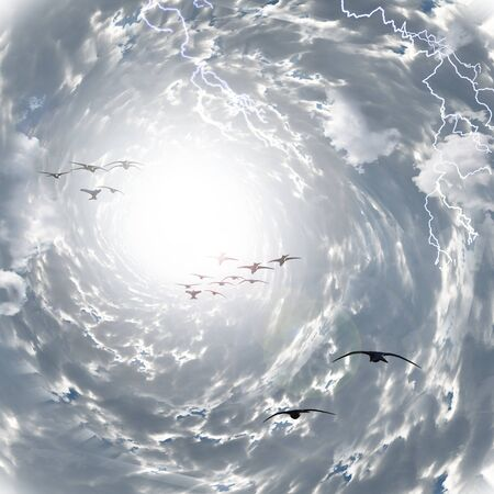 Birds flies to the light in tunnel of clouds