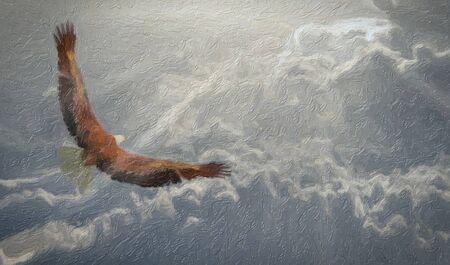 Digital painting. Eagle soars in the sky 版權商用圖片