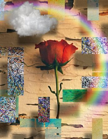 Modern art. Red rose on abstract background 스톡 콘텐츠