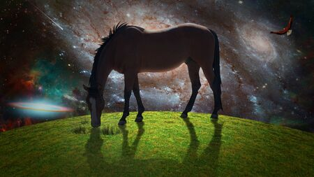 Horse in green field. Eagle soars in surreal sky. Galaxies and stars