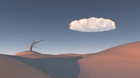 Withered tree in Zen Inspired Desert Landscape