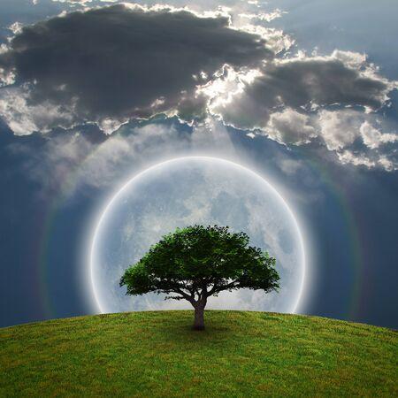 Green Tree. Bright moon and rainbow. 3D rendering 版權商用圖片