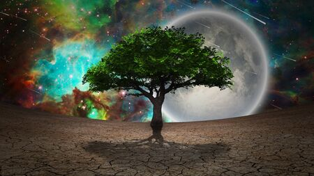 Surrealism. Green tree of life in arid land. Full moon in vivid starry sky Reklamní fotografie