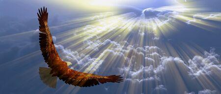 Adelaar tijdens de vlucht boven de wolken