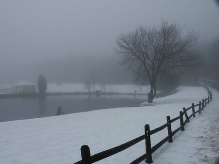 Winter lake. Fog and snow