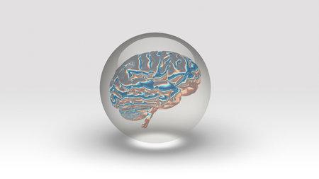 Brain inside bubble. 3d rendering. Banco de Imagens