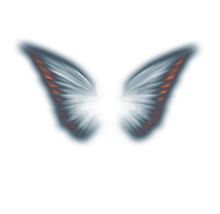 Painted angel wings isolated on white. 3D rendering