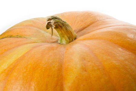 pumpkin close-up Stock Photo - 14801342