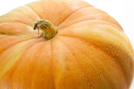 fresh pumpkin close-up Stock Photo - 14801343