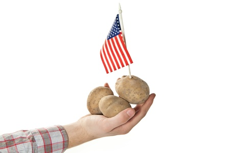 american crops Stock Photo - 15163374