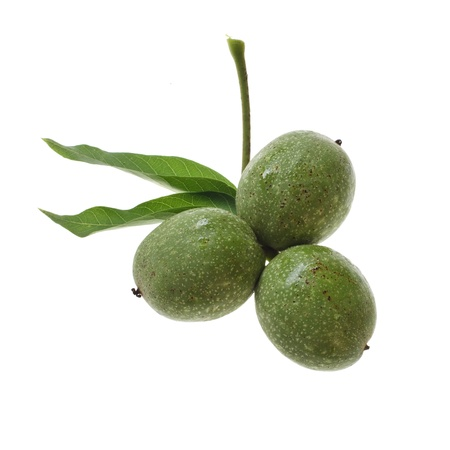 fresh green walnuts with water drops isolated on white background Stock Photo