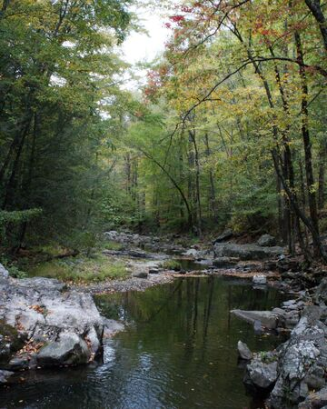 River View in the Fall Imagens