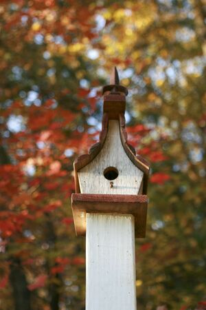 bird house in autumn