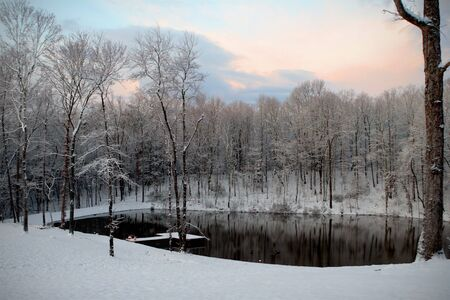 Snow View of Pond