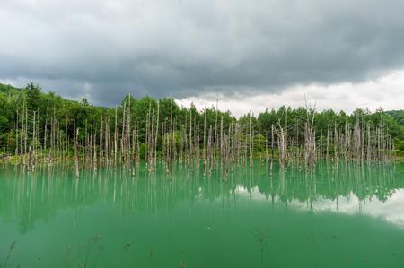 Japanese landscape-aoi ike-biei-hokkaido