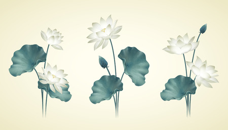 Graceful white lotus and leaves collection in hand drawn style
