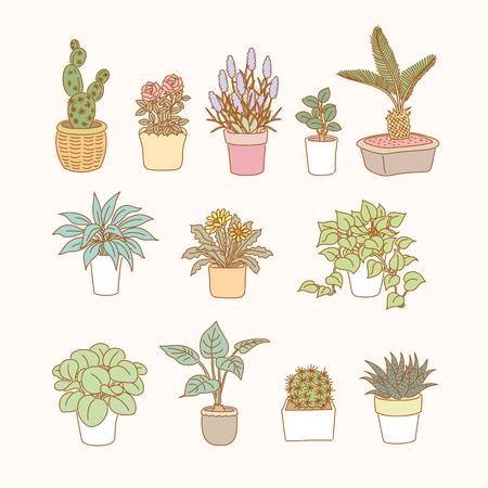 Attractive pot plants collection in line style Vektorgrafik