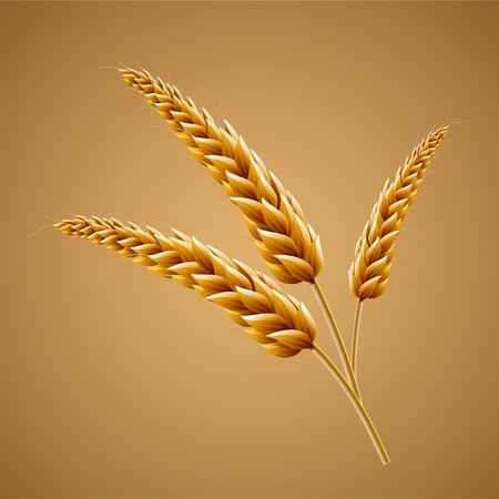 Closeup looking at malt in 3d illustration