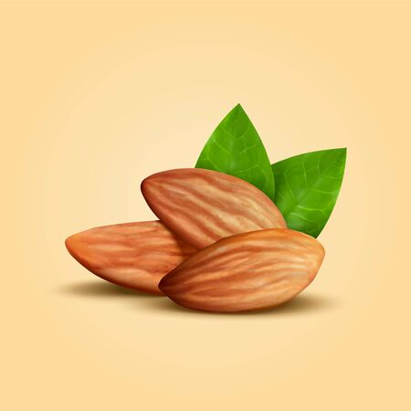 Whole shelled almond seeds with green leaves isolated on warm yellow background in 3d illustration