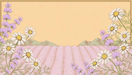 Elegant engraving chamomile and lavender field background