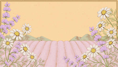 Elegant engraving chamomile and lavender field background