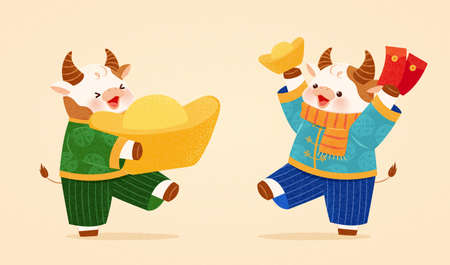 Cute cows with costumes holding gold ingots and red envelopes. Animal character design for 2021 Chinese new year zodiac sign ox.
