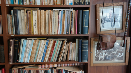 antiquarian: Antiquarian in the library