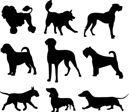 breeds: dog set Illustration