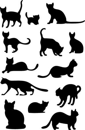 silueta de gato: gatos establecen