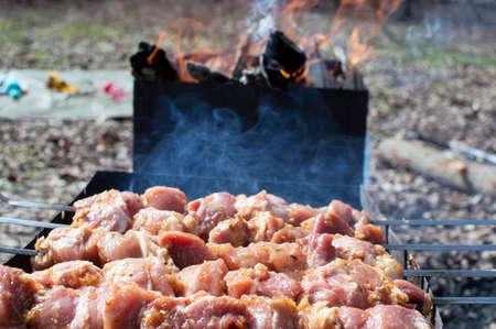 Bake tasty kebabs near barbecue