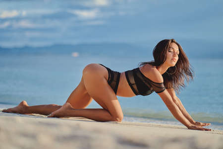 Woman at the sea. Beautiful young woman standing on all fours on the beach