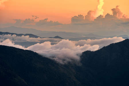 Fog over the Doi Inthanon mountain,Chiangmai Thailand. Banque d'images